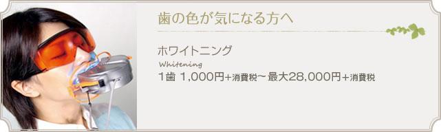 歯の色が気になる方へ ホワイトニング Whitening 1歯1000円+消費税~